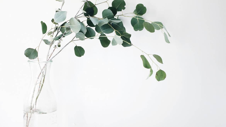 Lovethics   4 avantages à devenir minimaliste