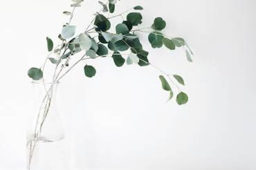 Lovethics | 4 avantages à devenir minimaliste